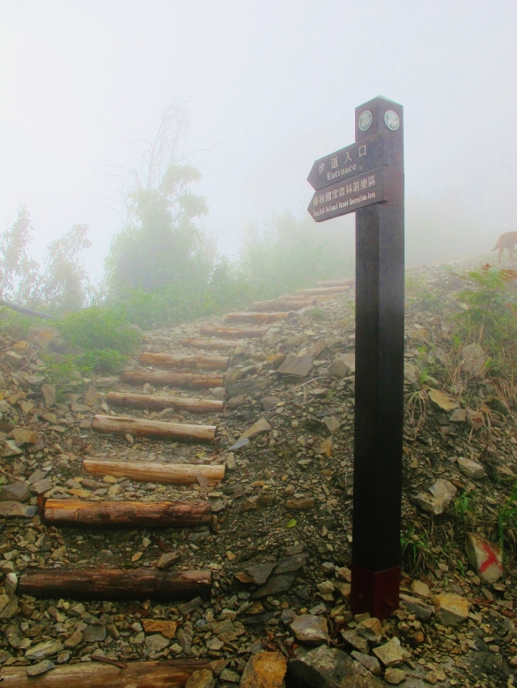 The start of the trail to Tengjhih National Forest, in the fog.