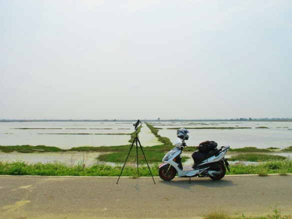 Scooter-based birding at Budai salt pans.