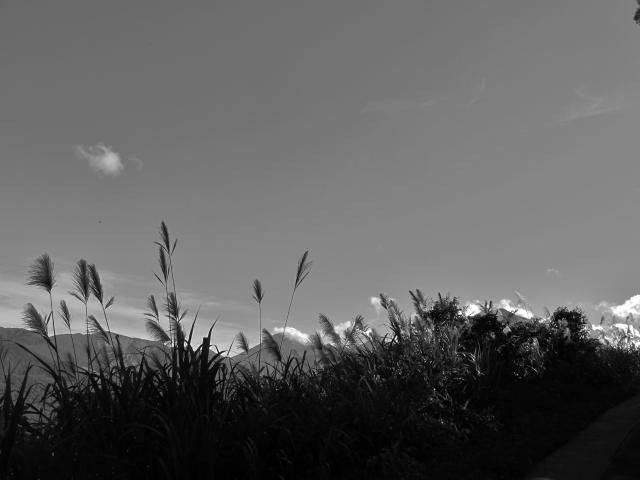 Scenery at Dahanshan.