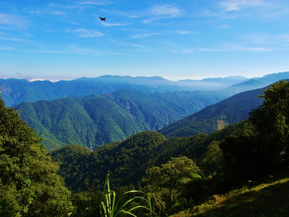 8.00am view from the trail to Tengjhih National Forest HQ.